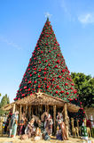 Christmas tree in Bethlehem, Palestine. Christmas tree on the square of Bethlehem, Palestine Royalty Free Stock Images