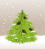 Christmas tree and birds,snow vector. Green christmas tree and birds,snow Stock Photography