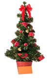 Christmas tree and blank card Royalty Free Stock Images