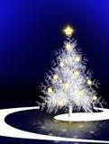 Christmas tree on blue background. Christmas tree isolated.Christmas blue background Stock Photos