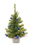 Christmas tree with blue chris. Tmas balls on the white stock photos