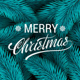 Christmas tree blue fir branches vector background. Stock Images