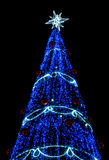 Christmas tree with blue light Stock Images