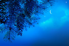 Christmas tree on a blue night sky background stock photography