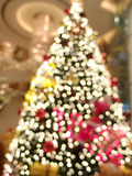 Christmas tree. Stock Photos