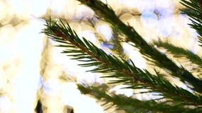 Christmas tree bokeh lights. Christmas tree with bokeh and christmas lights stock footage