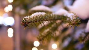 Christmas tree bokeh lights. Christmas tree with bokeh and christmas lights stock video