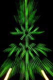 Christmas tree with bokeh defocused lights Stock Image