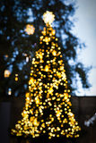 Christmas tree the bokeh effect Royalty Free Stock Photos