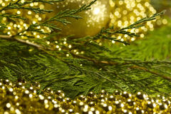 Christmas tree with bokeh light and blur background with decorat Royalty Free Stock Photos