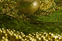 Christmas tree with bokeh light and blur background with decorat Royalty Free Stock Images