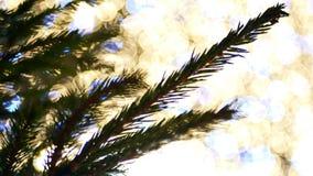 Christmas tree bokeh lights. Christmas tree with bokeh and christmas lights stock video footage