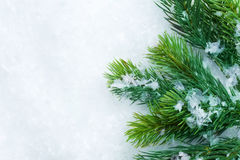 Christmas Tree border. Christmas Tree over Snow background. Border design. With copyspace royalty free stock photography
