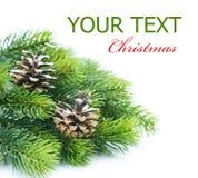 Christmas Tree Border Royalty Free Stock Photos