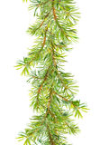 Christmas tree border - fir  branches. Watercolor frame strip Stock Photography