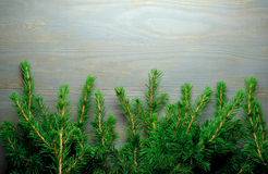 Christmas tree border Stock Images