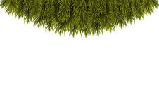 Christmas Tree Borders. Stock Images