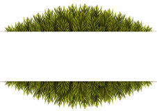 Christmas Tree Borders. Christmas background. Vector illustration Stock Photo