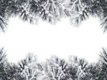 Christmas Tree Borders Royalty Free Stock Images