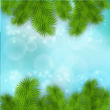 Christmas Tree Borders. Vector realistic illustration for your design Royalty Free Stock Photos