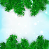 Christmas Tree Borders. Vector realistic illustration for your design Stock Photo
