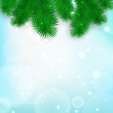 Christmas Tree Borders Stock Photo