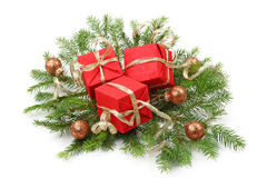 Christmas tree bough Stock Photography