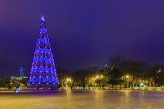 Christmas tree on the boulevard in Baku.Azerbaijan Stock Photos