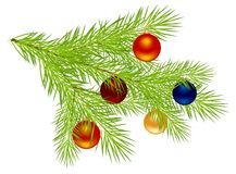 Christmas tree branch Royalty Free Stock Images