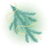 Christmas tree branch. Snow-covered Christmas tree branch and a garland Stock Photography
