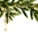 Christmas tree branch Stock Images