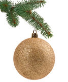Christmas tree branch with a ball Royalty Free Stock Photography
