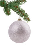 Christmas tree branch with a ball Stock Images