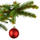 Christmas tree branch with ball royalty free stock image