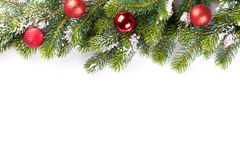Christmas tree branch with baubles royalty free stock photos