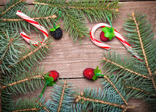 Christmas tree branch, berries and candy canes on a wooden table Royalty Free Stock Photography