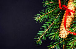Christmas Tree Branch on Blackboard with copy space for greeting Stock Image