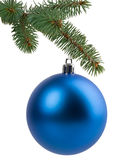 Christmas tree branch with a blue ball Royalty Free Stock Image