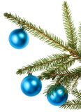 Christmas tree branch with blue decoration Stock Photography