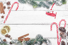 Christmas tree branch with candy cane, spice and fir branches  o Royalty Free Stock Images
