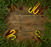 Christmas tree branch with cones, cinnamon, dittany and candy ca Royalty Free Stock Photos