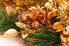 Christmas tree branch Stock Photography