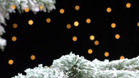 Christmas tree branch covered in snow at night. Christmas tree branch covered in snow swinging against black background with distant blurry lights, copy space stock footage