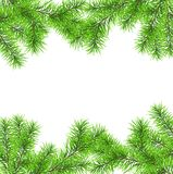 Christmas tree branch for decorate. Vector frame from Christmas tree branch for decorate Stock Photo