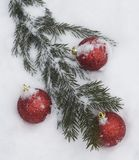 Christmas tree branch with decorations Stock Photos