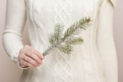 Christmas tree branch. Detail of female hands holding a christmas tree branch Stock Photos