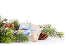Christmas tree branch with gift box Stock Images