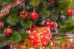 Christmas tree branch with a gift Royalty Free Stock Images