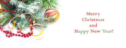 Christmas tree branch with gold ribbon and red sphere Royalty Free Stock Photo