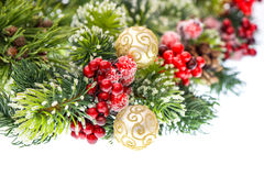 Christmas tree branch with golden balls Royalty Free Stock Photo